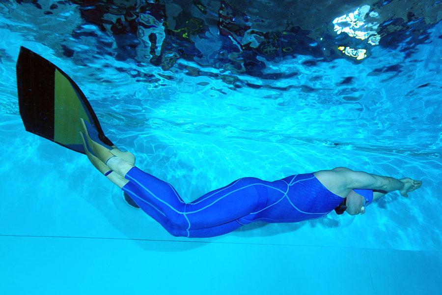 delfin pod wodą