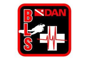 >DAN BLS