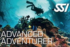 >Advanced Adventurer