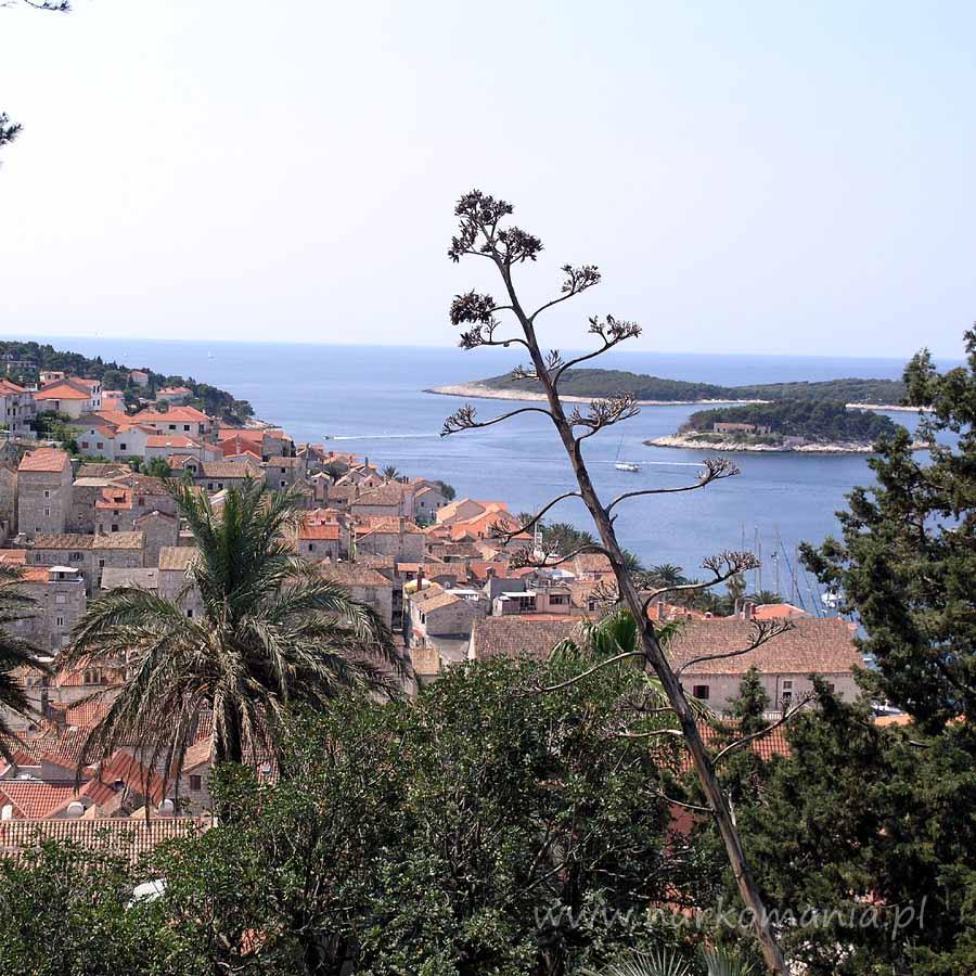 nurkowanie Chorwacja morze