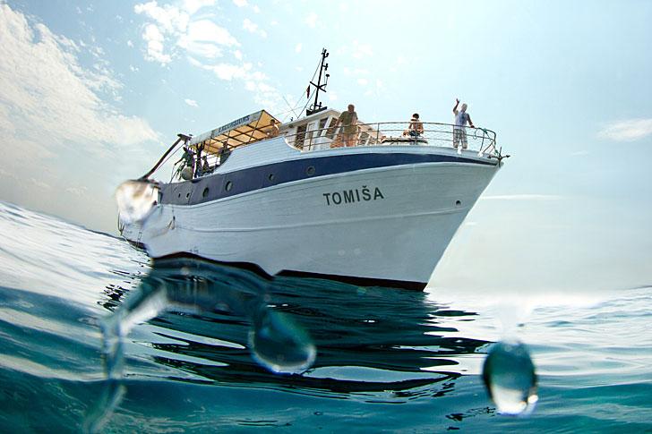 Tomisa Nautilus