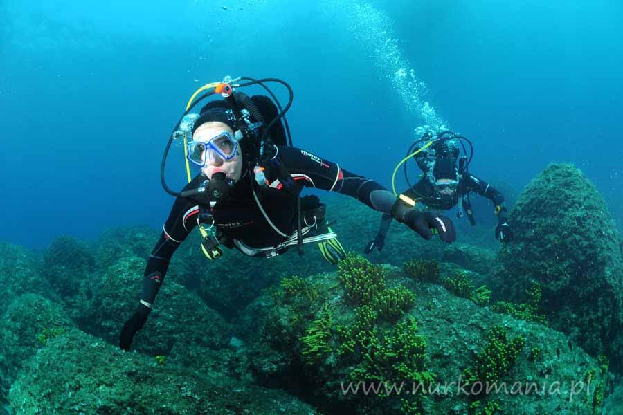 nurkowanie Chorwacja wyspa Brac