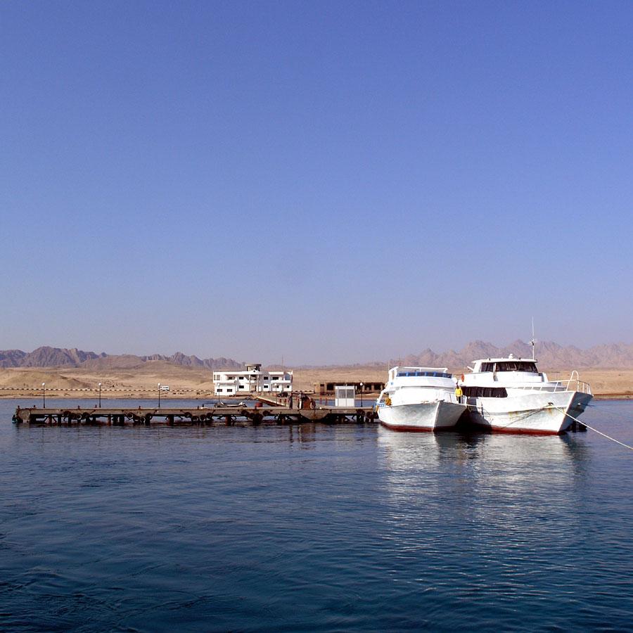 nurkowanie Egipt morze, port