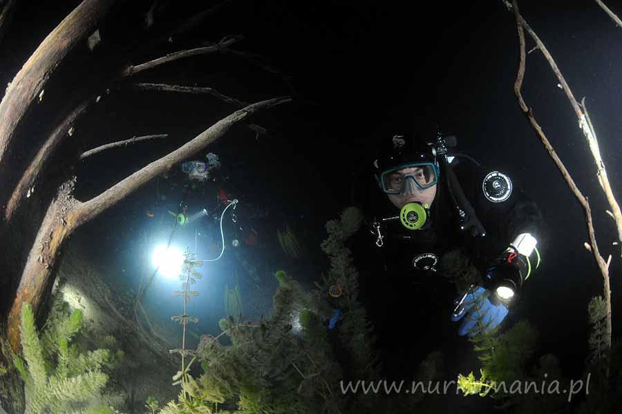 nurkowanie nocne Zakrzówek 2011