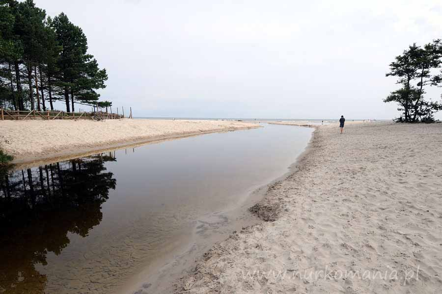 nurkowanie rzeka Piaśnica
